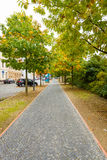 Autumn Street. Royalty Free Stock Image