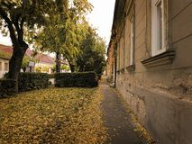 Autumn street. Leaves on the street Royalty Free Stock Photo