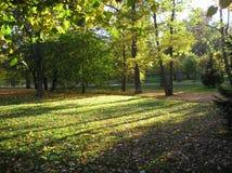 An autumn stroke. Royalty Free Stock Photography