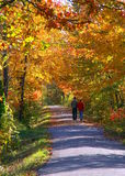 An Autumn Stroll. A couple take a quiet Fall walk Stock Photography