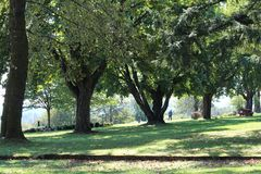 Autumn Stroll at Heritage Park. Shade trees cast shadows on the manicured slopes of Fraser River Heritage Park.  Located on Mary Street in Mission, Heritage Park Stock Photo