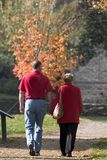 Autumn stroll in park. Couple enjoying a walk in autumn park in sunny day royalty free stock image