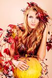 Autumn style Royalty Free Stock Photography