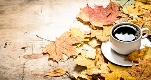 Autumn style. A Cup of hot coffee with maple leaves. Royalty Free Stock Photography