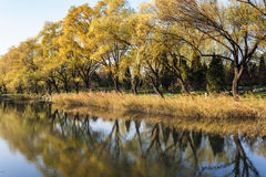 Autumn in Summer Palace Stock Photography