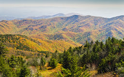 Autumn from the Summit of Mount Mitchell royalty free stock photos