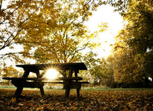 Autumn sun. Sun through picnic table, Clifty Falls, Indiana State Park stock photos