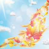 Autumn sun with leaves on blue sky. EPS 10. Vector file included vector illustration