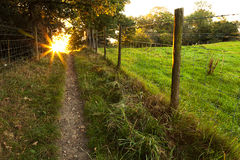 Autumn Sunburst Path Royalty Free Stock Photos