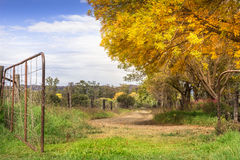 Autumn sundappled gravel road with gate open Stock Images