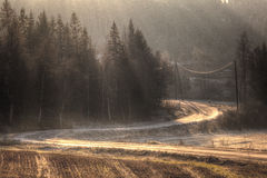 Autumn at a sunlit road Royalty Free Stock Photos