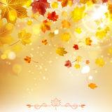 Autumn Sunny Background illustration stock