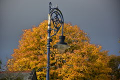 Autumn on sunny day ,park , lamppost , roof top , heavy clouds. Royalty Free Stock Photos