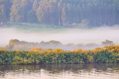 Autumn sunny landscape-birds eye view of autumn yellowed forest and river in early autumn morning Stock Photos