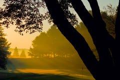 Autumn Sunrise. At a golf club with the sun shining through trees and morning fog stock photos