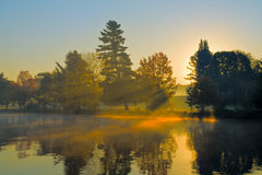 Autumn Sunrise. At a golf club with the sun shining through trees and morning fog stock photo
