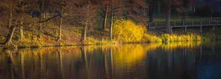 Stockholm Fall Foliage at Sunrise Royalty Free Stock Photos
