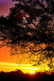 Autumn Sunrise au Royaume-Uni Image libre de droits