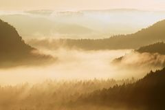 Autumn sunrise. Beautiful mountain of Bohemia. Treetops and peaks of hills increased from yellow and orange fog striped due to str Royalty Free Stock Image