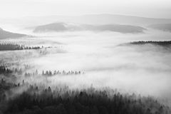 Autumn sunrise in a beautiful mountain within inversion. Peaks of hills increased from foggy background. Black and white photo. Royalty Free Stock Images