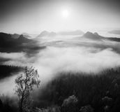 Autumn sunrise in a beautiful mountain within inversion. Peaks of hills increased from foggy background. Black and white photo. Royalty Free Stock Photography