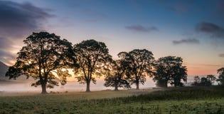Autumn Sunrise Clachan van Campsie Stock Afbeeldingen