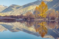 Autumn sunrise in the swamp of Esterri Aneu, Pyrenees, Spain Stock Photo