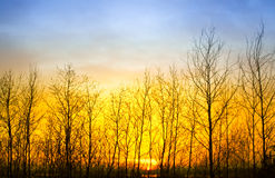 Autumn Sunset Stock Photos