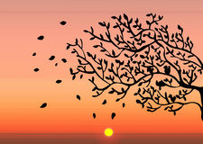 Autumn sunset. Illustration vector background Autumn sunset Royalty Free Stock Photography