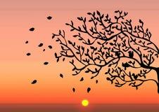 Autumn sunset. Illustration vector background Autumn sunset royalty free illustration