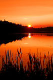 Autumn sunset in Algonquin Park Stock Photography