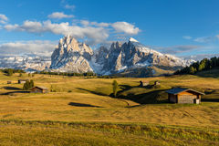 Autumn sunset at Alpe de Suisi with view at Sassolungo in Dolomites in Italy Royalty Free Stock Image