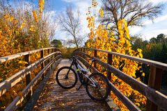 Autumn sunset bike on bridge Parque de Turia Royalty Free Stock Photography