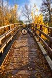 Autumn sunset bike on bridge Parque de Turia Stock Photos