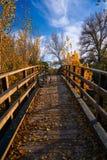Autumn sunset bike on bridge Parque de Turia Royalty Free Stock Photos