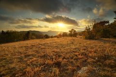 Autumn sunset in forest royalty free stock image