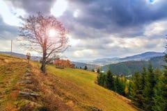 Autumn sunset landscape Stock Photos