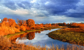 Autumn sunset landscape with forest river and yellowed tress Stock Photos