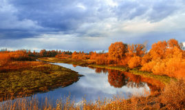 Autumn sunset landscape with forest river and yellowed tress. Autumn colorful water view of sunset autumn picturesque nature with autumn river and yellowed Royalty Free Stock Image