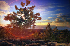 Autumn sunset in mountains Royalty Free Stock Image
