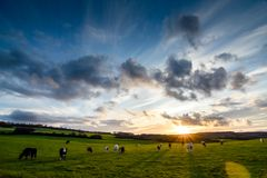 Autumn Sunset in Staffordshire, Inghilterra Fotografia Stock Libera da Diritti