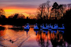 Free Autumn Sunset Swans At Cannon Hill Park Birmingham Royalty Free Stock Photo - 164580245