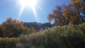 Autumn Sunshine. In Colorado Royalty Free Stock Image
