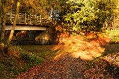 Autumn sunshine of the walkway Stock Photos