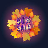 Autumn Super Sale banner with autumn leaves. Autumn discounts. Special offer. Stock Image