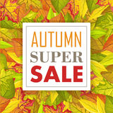 Autumn Super Sale Banner Fond de chute Vecteur Photo stock