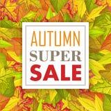 Autumn Super Sale Banner Fondo di caduta Vettore Fotografia Stock