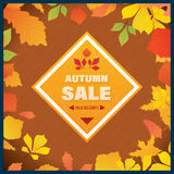 Autumn Super Sale banner with  leaves. Stock Photos