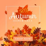 Autumn super sale flyer background design template. Fall discount online shop web banner. 50% off sale label, card, poster promotion with a pile of dry leaves vector illustration