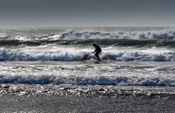 Autumn Surfing fotografía de archivo